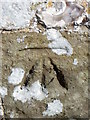 SU6431 : Bench Mark, St Peter's Church by Maigheach-gheal