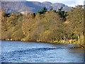 NN9557 : Autumn colour, Pitlochry by Maigheach-gheal