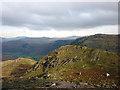 NY2412 : Sheep on Thornythwaite Fell by Karl and Ali
