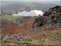 NY3404 : Loughrigg Tarn by Trevor Littlewood