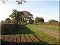 SJ6662 : Lea Green Villa Farm by Dr Duncan Pepper