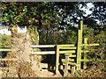 SJ6762 : Stile beside an ancient Oak tree by Dr Duncan Pepper