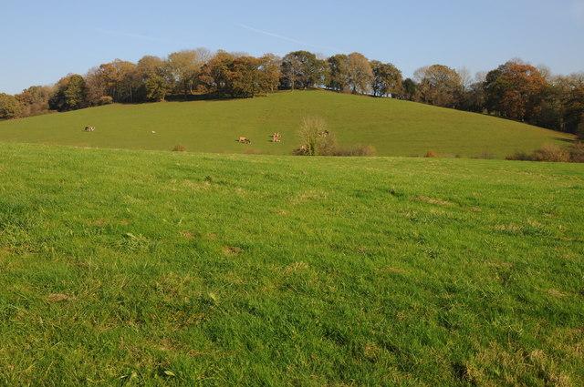 Farmland near Llanvihangel-Ystern-Llewern