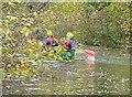 SU7851 : Canoeing near Coxmoor Bridge by Graham Horn