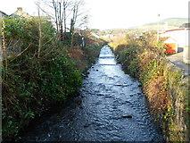 SS8591 : River Llynfi flows towards Meadow Street footbridge, Maesteg by Jaggery