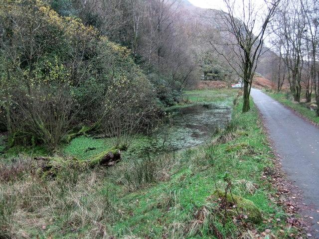White Moss Tarn