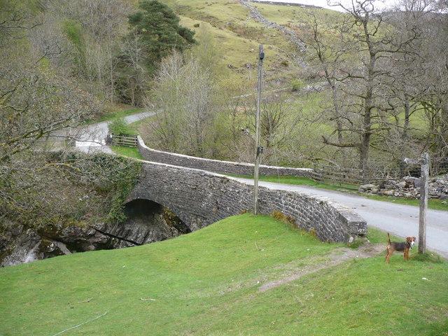 Danny Bridge