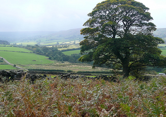 South from Danby Low Moor