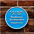 NS5862 : R. D. Laing -  Blue Plaque - Ardbeg Street by Alan Murray Walsh