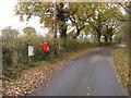 TM1773 : The Street & Bush Farm Corner Postbox by Adrian Cable