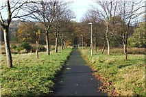 NS3978 : Path to Renton Bridge by Lairich Rig