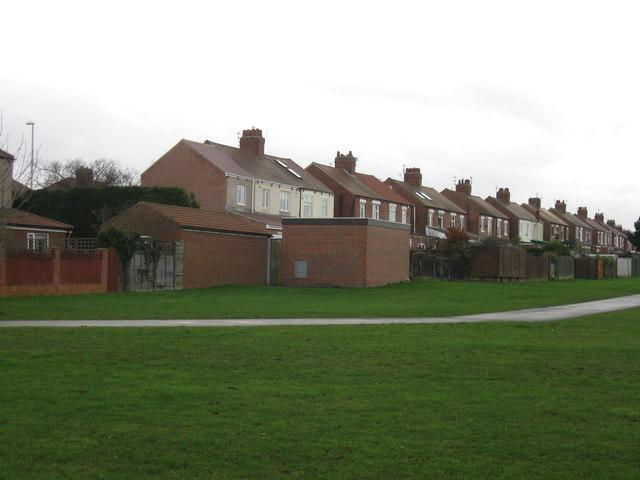 Rear of houses on Harton Lane