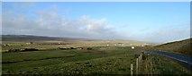 HU4245 : Tingwall valley by Robert W Watt