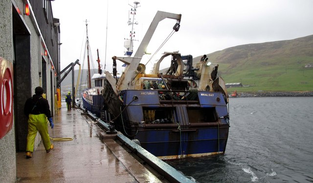 Landing at the fish market, Scalloway