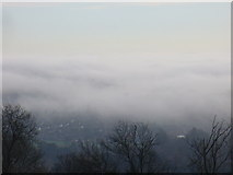 TQ1649 : Dorking in the Mist by Colin Smith