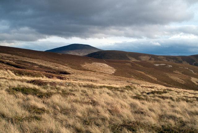 Areas of grass on heather moorland