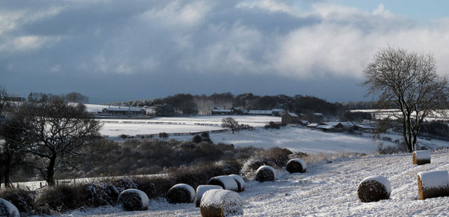 Wintry weather by Whittonstall