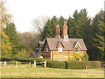 TQ1350 : Fox Cottages, Ranmore by Colin Smith