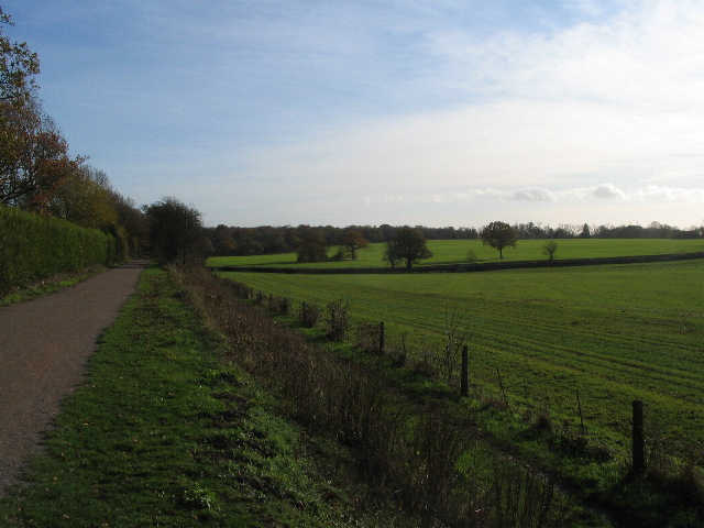 Kenilworth Greenway near Hollis Lane