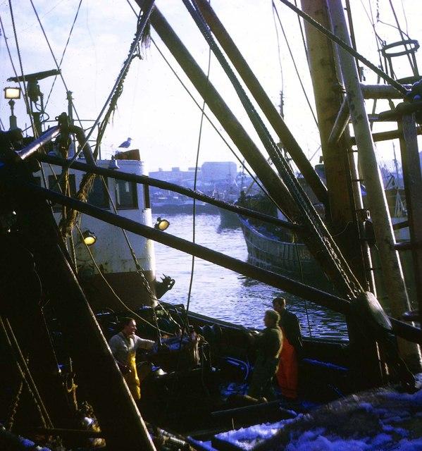 Trawler landing catch at Aberdeen