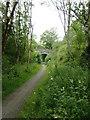 SN7167 : Dismantled railway near Ystradmeurig, Ceredigion by Roger  Kidd
