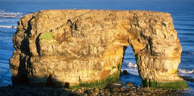 Marsden Rock - Stack and Arch