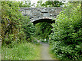 SN7067 : Dismantled railway and bridge near Ystradmeurig, Ceredigion by Roger  Kidd