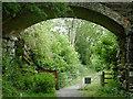 SN7167 : Dismantled railway and bridge near Ystradmeurig, Ceredigion by Roger  Kidd