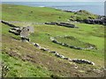 HU5240 : Ruined croft houses and sheepfold, Noss Sound by Rob Farrow