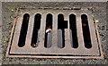 J5979 : Old grating cover, Donaghadee (1) by Albert Bridge