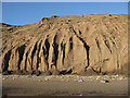 TA1281 : Coastal erosion, Filey Bay by Pauline E