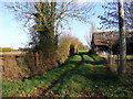 TM2177 : Footpath to Weybread  Road by Adrian Cable