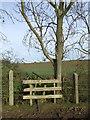 TL6453 : Broken Stile And Bridge by Keith Evans