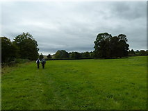 SU6017 : South Downs Society Green Travel Walks Week (209) by Basher Eyre