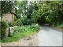 SU6017 : South Downs Society Green Travel Walks Week (215) by Basher Eyre