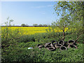 TL4180 : Fly tipping by Long North Fen Drove by Hugh Venables