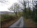 SO5098 : Autumn on the lane into Lawley by Richard Law