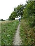 SU6017 : South Downs Society Green Travel Walks Week (234) by Basher Eyre