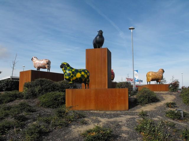 The Tesco sheep