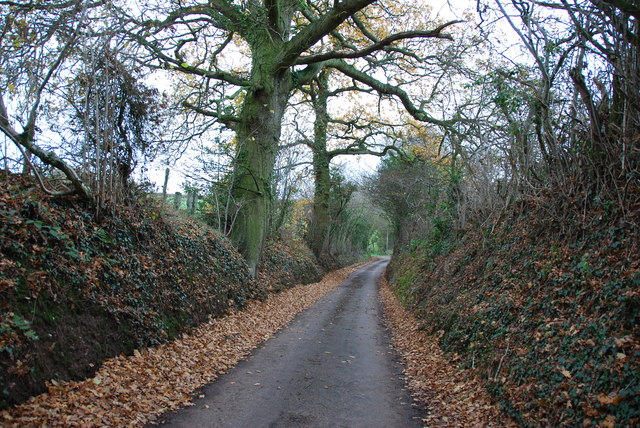 Narrow Lane heading towards Newhouse Farm