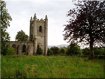 S0318 : Church ruins, Tubbrid by ethics girl