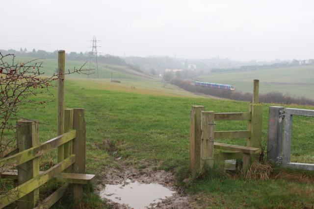 Footpath to Morley