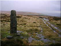 SE0130 : Standing Stone on High Brown Knoll by John H Darch