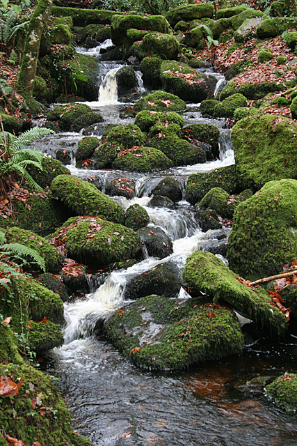 Buckland in the Moor: waterfalls
