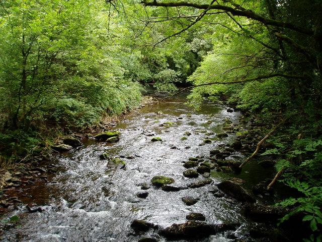 Glenshane River, near Cappoquin