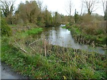 SU4828 : Bend in River Itchen east of Winchester College by Shazz