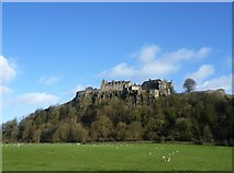 NS7894 : Stirling Castle from the Raploch Road by kim traynor
