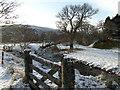NC8409 : Allt Smeorail at Gordonbush by sylvia duckworth