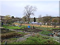 SP0490 : Handsworth Allotments in Winter by Roy Hughes