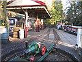 SJ9285 : Brookside Miniature Railway, Brookside Garden Centre by Peter Turner